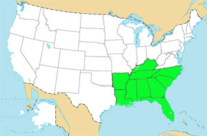 southern us map region