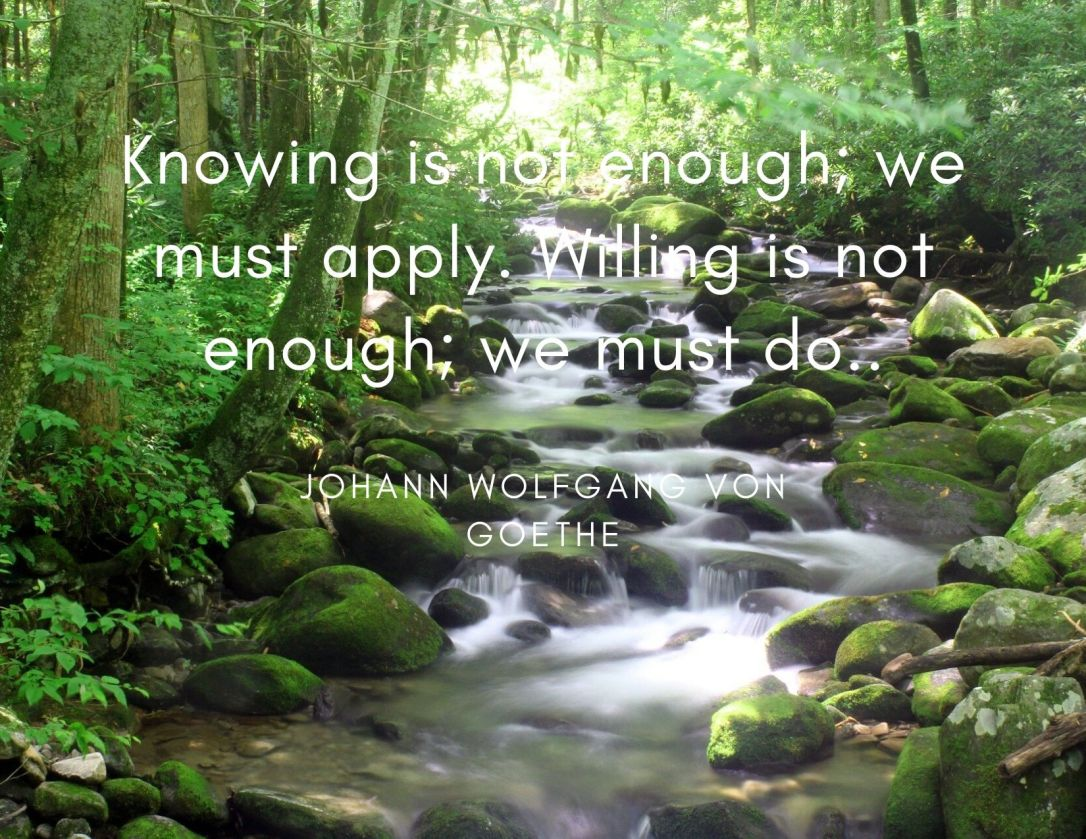 Monday Motivation by Johann Wolfgang von Goethe